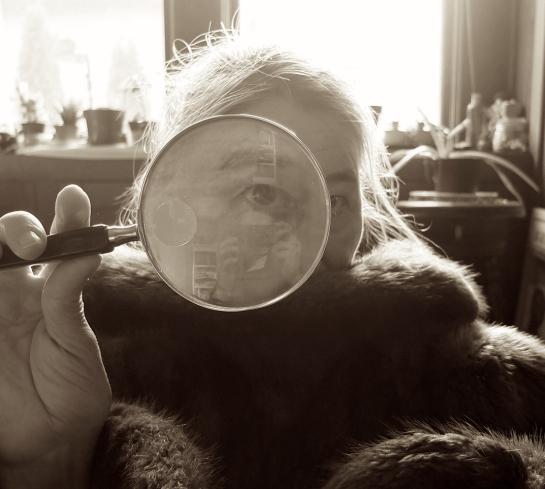 Brenda_Glass_crop